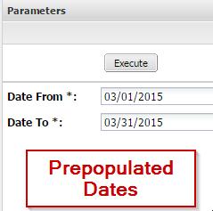 5-report-param-prompt